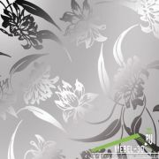 Хризантемы серебро
